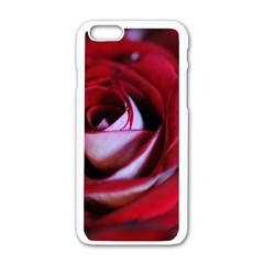 Red Rose Center Apple Iphone 6 White Enamel Case by bloomingvinedesign