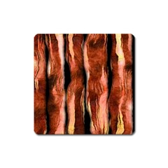 Bacon Magnet (square) by bloomingvinedesign