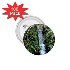 Bamboo Waterfall 1 75  Button (100 Pack) by bloomingvinedesign