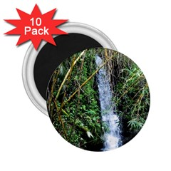 Bamboo Waterfall 2 25  Button Magnet (10 Pack) by bloomingvinedesign