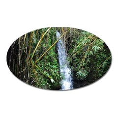 Bamboo Waterfall Magnet (oval) by bloomingvinedesign