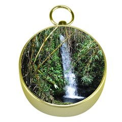 Bamboo Waterfall Gold Compass by bloomingvinedesign