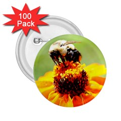 Bee On A Flower 2 25  Button (100 Pack) by bloomingvinedesign