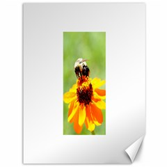 Bee On A Flower Canvas 36  X 48  (unframed) by bloomingvinedesign