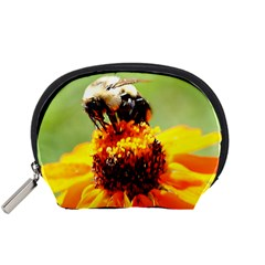 Bee On A Flower Accessory Pouch (small) by bloomingvinedesign