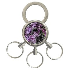Lilacs Fade To Black And White 3 Ring Key Chain by bloomingvinedesign