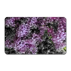 Lilacs Fade To Black And White Magnet (rectangular) by bloomingvinedesign
