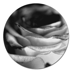 Light Black And White Rose Magnet 5  (round) by bloomingvinedesign