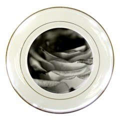 Light Black And White Rose Porcelain Display Plate by bloomingvinedesign