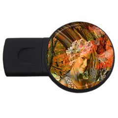 Autumn 2gb Usb Flash Drive (round) by icarusismartdesigns