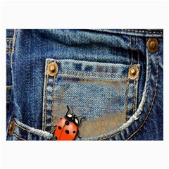 Blue Jean Lady Bug Glasses Cloth (large) by TheWowFactor