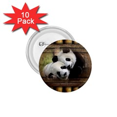 Panda Love 1 75  Button (10 Pack) by TheWowFactor
