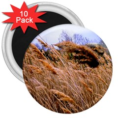Blowing Prairie Grass 3  Button Magnet (10 Pack) by bloomingvinedesign