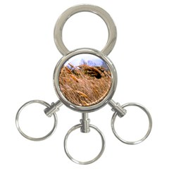 Blowing Prairie Grass 3 Ring Key Chain by bloomingvinedesign
