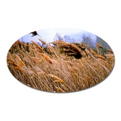 Blowing Prairie Grass Magnet (oval) by bloomingvinedesign