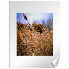 Blowing Prairie Grass Canvas 36  X 48  (unframed) by bloomingvinedesign