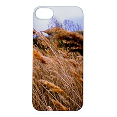 Blowing Prairie Grass Apple Iphone 5s Hardshell Case by bloomingvinedesign