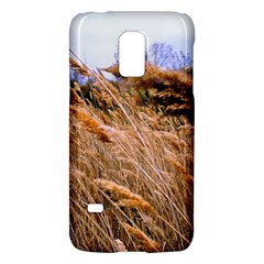 Blowing Prairie Grass Samsung Galaxy S5 Mini Hardshell Case  by bloomingvinedesign