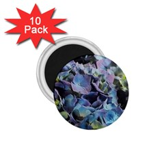 Blue And Purple Hydrangea Group 1 75  Button Magnet (10 Pack) by bloomingvinedesign
