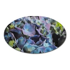 Blue And Purple Hydrangea Group Magnet (oval) by bloomingvinedesign