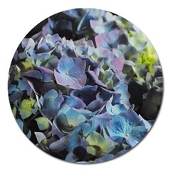 Blue And Purple Hydrangea Group Magnet 5  (round) by bloomingvinedesign