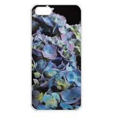 Blue And Purple Hydrangea Group Apple Iphone 5 Seamless Case (white) by bloomingvinedesign