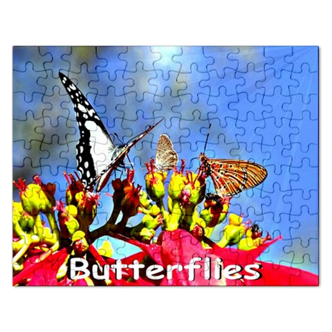 Puzzel By Pamela Sue Goforth Front