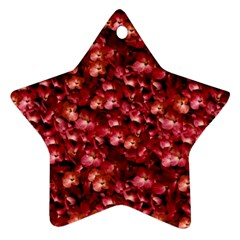Warm Floral Collage Print Star Ornament (two Sides) by dflcprints