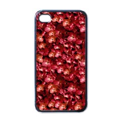 Warm Floral Collage Print Apple Iphone 4 Case (black) by dflcprints