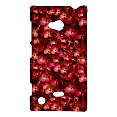 Warm Floral Collage Print Nokia Lumia 720 Hardshell Case by dflcprints