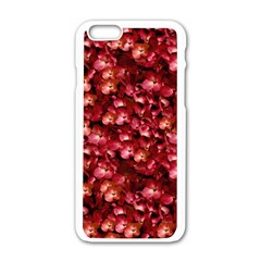 Warm Floral Collage Print Apple Iphone 6 White Enamel Case by dflcprints