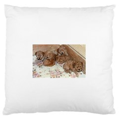 Apricot Poodle Pups Large Flano Cushion Case (One Side) by TailWags
