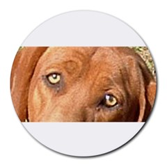 Redbone Coonhound Eyes 8  Mouse Pad (Round) by TailWags
