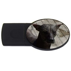 mexican hairless / Xoloitzcuintle 1GB USB Flash Drive (Oval) by TailWags