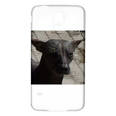 mexican hairless / Xoloitzcuintle Samsung Galaxy S5 Back Case (White) by TailWags
