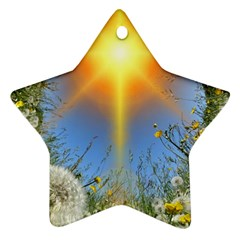 Dandelions Star Ornament by boho