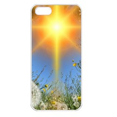 Dandelions Apple Iphone 5 Seamless Case (white) by boho