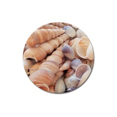 Seashells 3000 4000 Magnet 3  (round) by yoursparklingshop