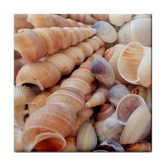 Sea Shells Ceramic Tile