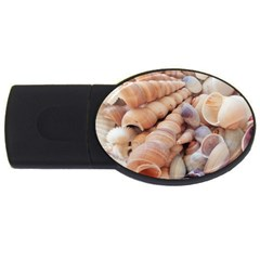 Sea Shells 4gb Usb Flash Drive (oval) by yoursparklingshop