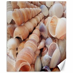 Sea Shells Canvas 8  X 10  (unframed) by yoursparklingshop