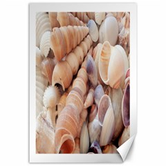 Sea Shells Canvas 24  X 36  (unframed) by yoursparklingshop