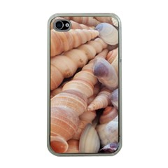Sea Shells Apple Iphone 4 Case (clear) by yoursparklingshop