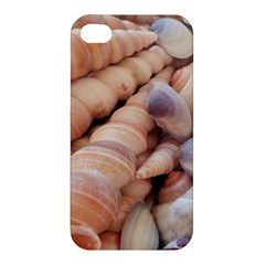 Sea Shells Apple Iphone 4/4s Premium Hardshell Case by yoursparklingshop