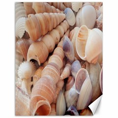 Sea Shells Canvas 12  X 16  (unframed) by yoursparklingshop