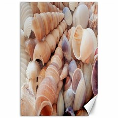Sea Shells Canvas 12  X 18  (unframed) by yoursparklingshop