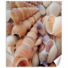 Sea Shells Canvas 20  X 24  (unframed)