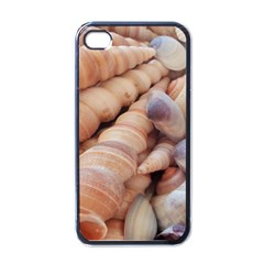 Sea Shells Apple Iphone 4 Case (black) by yoursparklingshop