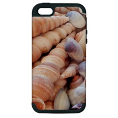 Sea Shells Apple Iphone 5 Hardshell Case (pc+silicone) by yoursparklingshop