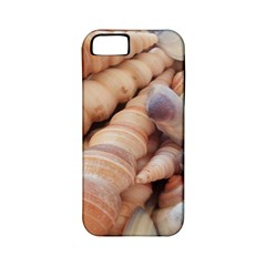 Sea Shells Apple Iphone 5 Classic Hardshell Case (pc+silicone)